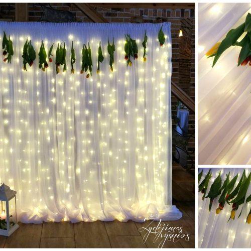 Tulpių fotosiena