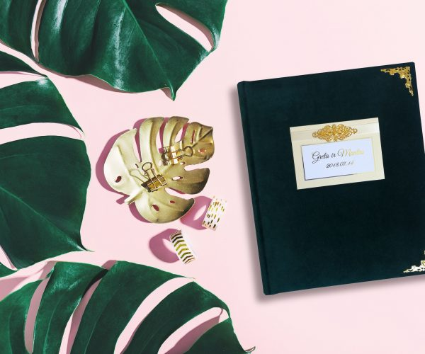 Monstera leaves on pink background. View from above. Girly desk background with monstera. Summer nature fashion concept. Horizontal with copy space.
